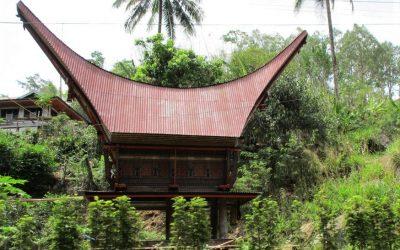toradża (Toraja)
